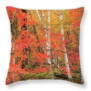 Maple Birch Forest In Autumn Throw Pillow