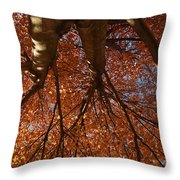 Maple Dreaming Throw Pillow