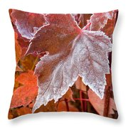 Maple Frost  Throw Pillow