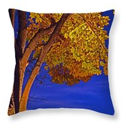 Maple In The Night Throw Pillow