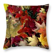Maple Leaf Colors Throw Pillow