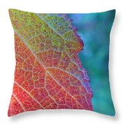 Maple Leaf In Autumn Throw Pillow