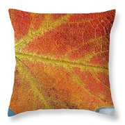Maple Leaf On Water Throw Pillow