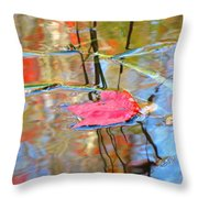 I Am Here In The Changing Waters Throw Pillow