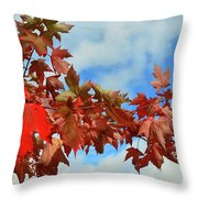 Maple Leaves Against The Sky  Throw Pillow