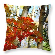 Maple Leaves And Birch Bark Throw Pillow