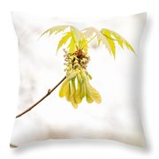 Maple Leaves And Fruits Throw Pillow