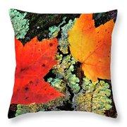 Maple Leaves On Fallen Log Throw Pillow