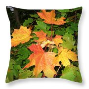Maple Mania 10 Throw Pillow