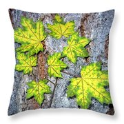 Maple Mania 12 Throw Pillow