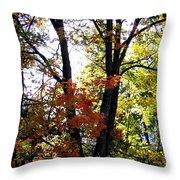 Maple Mania 16 Throw Pillow
