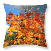 Maple Mania 8 Throw Pillow