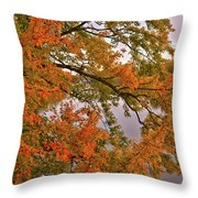 Maple Over The River Throw Pillow