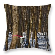 Maple Sirup Hdr No1 Throw Pillow