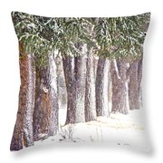 Maple Street Maples Colourized Throw Pillow