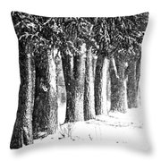Maple Street Maples Throw Pillow