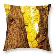 Maple Tree 3 Throw Pillow