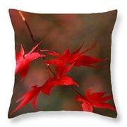 Maple Tree Leaves II Throw Pillow