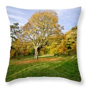 Maple Tree On The Slope. Throw Pillow