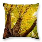 Maple Tree Poster Throw Pillow