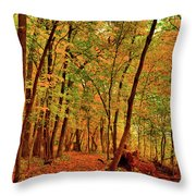 Maple Woods Trail 2 Throw Pillow