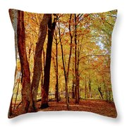Maple Woods Trail 3 Throw Pillow