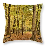 Maple Woods Trail Throw Pillow