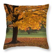 Maples Trees In Fall Throw Pillow