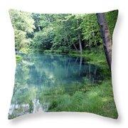 Maramec Springs 1 Throw Pillow