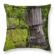 Marble Falls Texas Old Fence Post In Spring Throw Pillow
