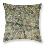 Marble Slab 6-23-2015 - 1 Throw Pillow