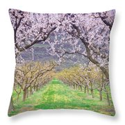March 28 2010 Throw Pillow