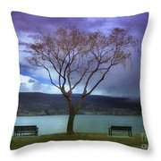 March 30 2010 Throw Pillow