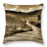 March 4 2010 Throw Pillow