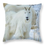 March Madness Throw Pillow
