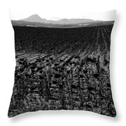 March Of The Sunflowers Throw Pillow