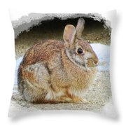 March Rabbit With Vignette Throw Pillow