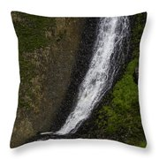 March Waterfall Throw Pillow