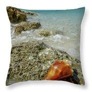 Marco Island South Beach Throw Pillow