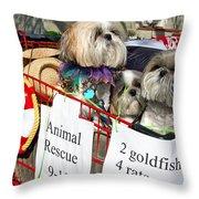 Mardi Gras Pekingese Pups Throw Pillow by Kathleen K Parker