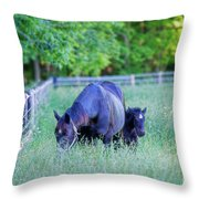 Mare And Foal In Shadows Throw Pillow