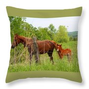 Mare And Foal Throw Pillow