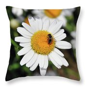 Margherita Throw Pillow