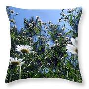 Marguerite Abundance Throw Pillow
