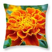 Marigold Photograph Throw Pillow