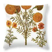 Marigolds, 1613 Throw Pillow