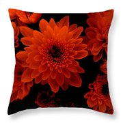 Marigolds In Orange Light Throw Pillow