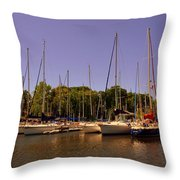 Marina At Lake Murray S C Throw Pillow