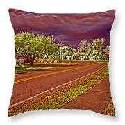 Marina Drive Holmes Beach Throw Pillow