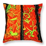 Marinated 3 Throw Pillow